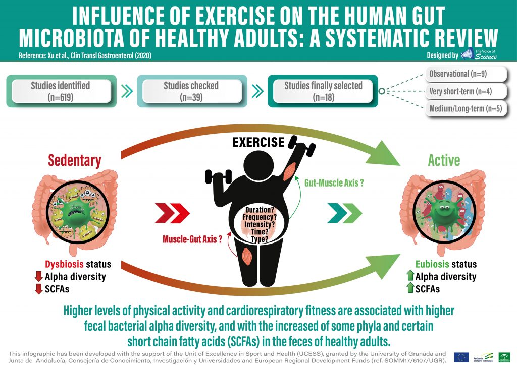 🔥 Very short and medium long-term exercise interventions are able to modify gut microbiota composition and diversity in healthy adults.