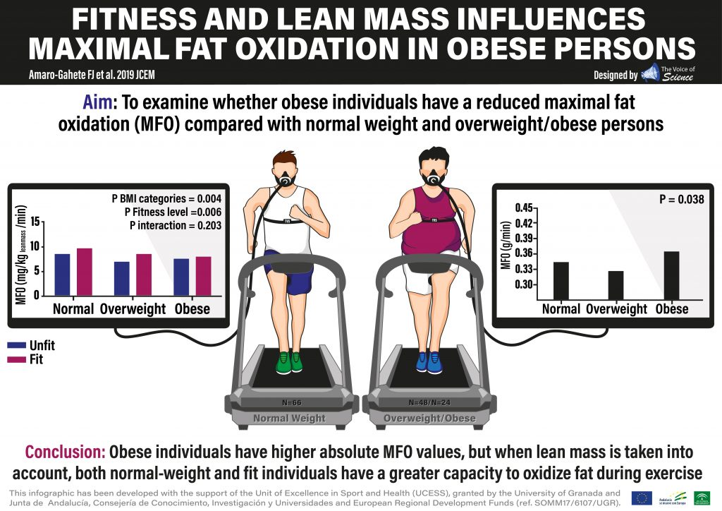 Obese individual have a higher absolute maximal fat oxidation values during exercise, although lean mass seems to be playing an important role!