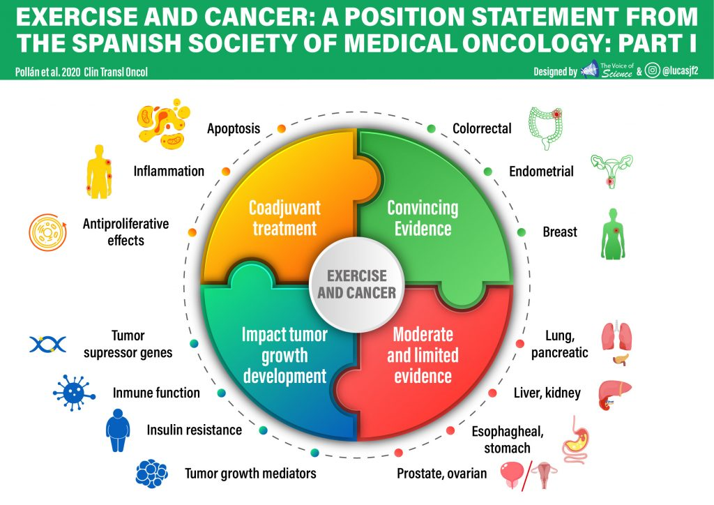 Exercise and cancer: a position statement from the Spanish Society of Medical Oncology: Part I