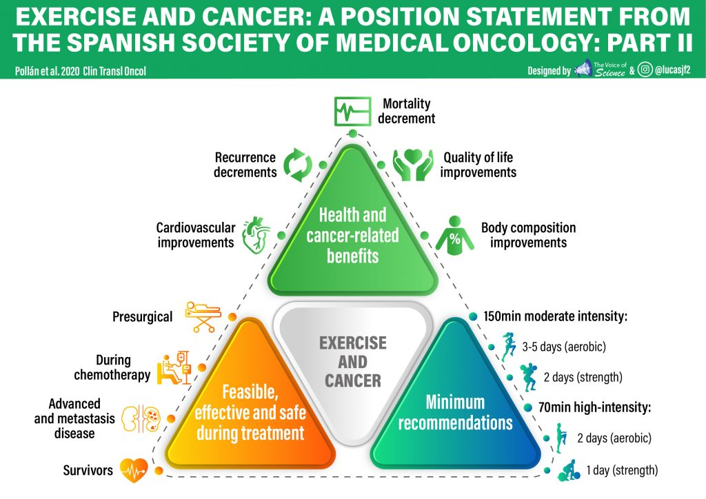 Exercise and cancer: a position statement from the Spanish Society of Medical Oncology: Part II
